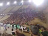 Panathinaikos ultras Gate13 Chant Supporter : PAO gera