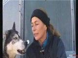 Grande Odyssée 2009 : Isabelle Travadon, une femme musher 3