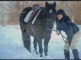 Le cheval sur amélie poulain
