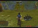 Runes of Magic Gameplay Footage