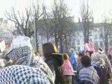 manifestation palestine gaza lyon 17 janvier 2009