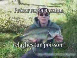 Compilation pêche aux leurres 2007/2008