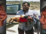 Palestine enfant tuer honte sur ses assasin
