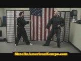Kempo/Kenpo Karate Techniques-Jim Brassard