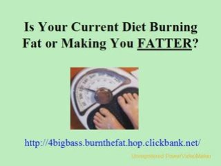 Lose Weight Dieting Burn Body Fat Lose Weight Fast