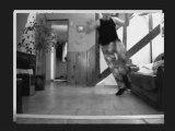 Tite compile jump hakken