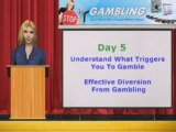 Stop Gambling | Quit Gambling | The Stop2Gambling Program