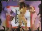 Janet Jacksons janet  World Tour