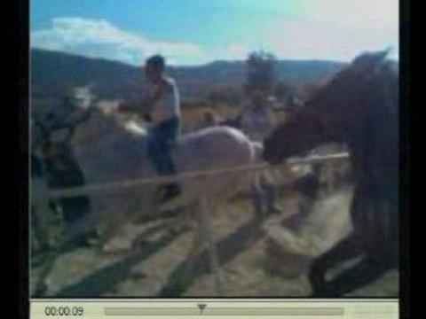 Carrera de caballos en Las Trojes, Jalisco, Mexico