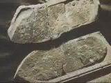 trace de pas humains vieux de plusieurs 100 ènes de millions d'années