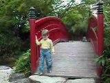 LOUP sur le pont Chinois 03-06-2007