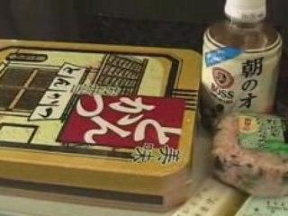 Pocket Japan #16 - De Nikkô à Takayama