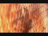Ruin Movies With Inappropriate Soundtracks: Terminator 2