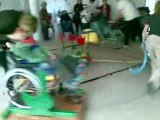 """rêve d'enfants handicapés """"le manège en bois"""""""