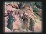 algerie une terre en deuil