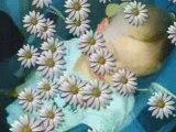 nolan,de sa naissance a aujourd'hui
