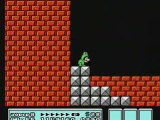 Frogsuit Mario Bros. Frog Frog Frog (End of Everything)