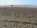 Louis et Nini sur la plage, Louis e Nini na praia