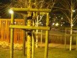 Lyon: Ombres et Lumières sur Palissades