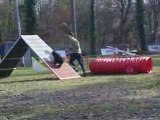 Entrainement d'agility 01/03/2009 Peps 4ème parcours