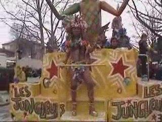 Seconde partie du carnaval d'Albi 2009