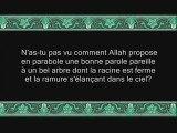 Sourate 14 IBRAHIM (ABRAHAM) 52 versets Récitée par Shuraim