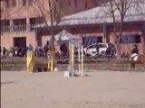 CSO club 2 GP Ignes