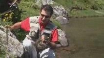 Pêche à la truite dans les lacs des Pyrénées
