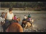 Promenade à cheval entre amis