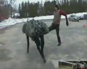 INCROYABLE ANIMAL ROBOT