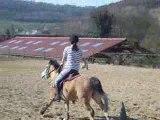 pony games jeu des tasses !!!!