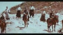 LIGHTNING SWORDS OF DEATH Lone Wolf Shogun Assassin 1972