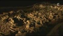Planète terre (1/3) la naissance des mammifères