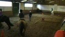 28-03-09 Leçon d'équitation-sauts au manège El Cortijo