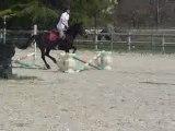 Obstacle 1ER AVRIL 1M15
