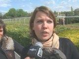 Concours complet d'équitation à Nîmes