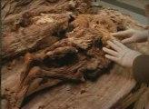 Le mystère des momies incas (3/3)