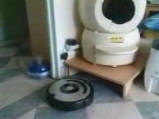 Litière Robot et Robot aspirateur Roomba 560