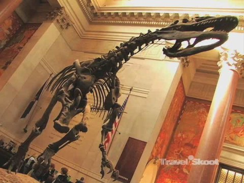 Best Museums and Culture in New York City
