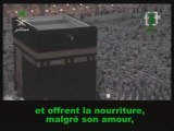 Sourate L'homme (Al-Insan) Al Jouhaynni salat Al Fajr