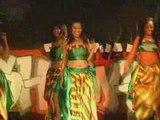 JOURNEE DE LA FEMME AFROCARAIBEENNE 2009