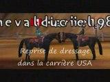 Mission équitation online Dressage