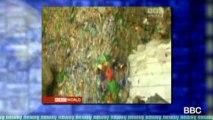 Oceans of Plastic