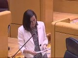 Ángeles Gónzalez-Sinde responde en el Senado