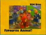 CBBC1 Afternoon Continuity - Wild Week 2001