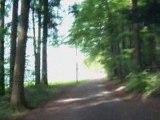 Ausflug Ostfriedhof Guggeien-Hoechst St. Gallen