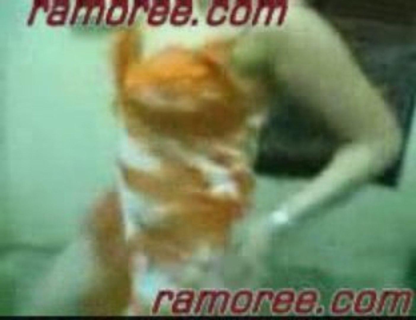 رقص بقميص النوم رقص مصري www.ramoree....