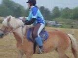 2 tasses le 8  mai 2009  pony games