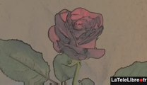 LES ANNEES ROSES