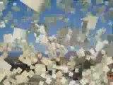 صور من المنصورة ولاية برج بوعريريج